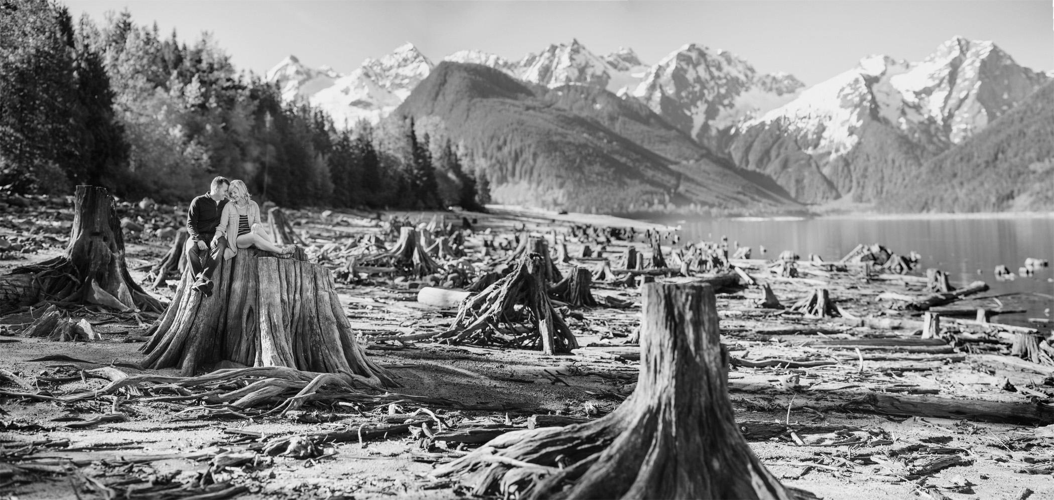 Jones Lake Portrait with Tree Stumps