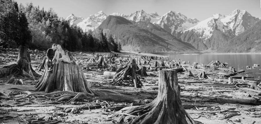 Tree stumps at Jones Lake