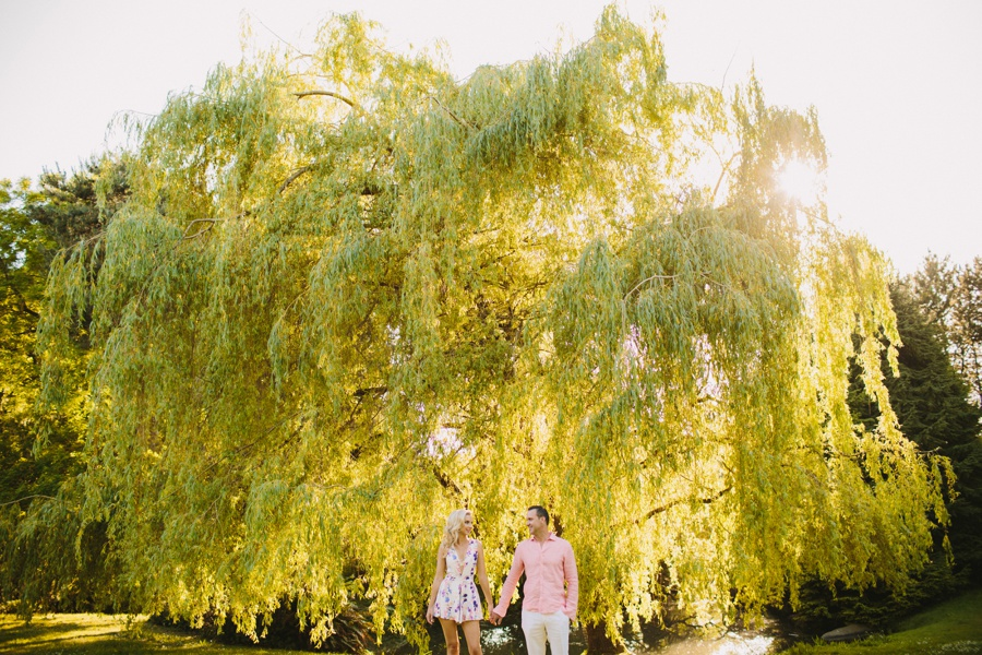 Willow Tree Engagement Portrait