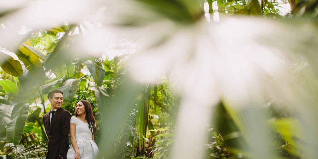 Wedding Portrait at Bloedel Conservatory